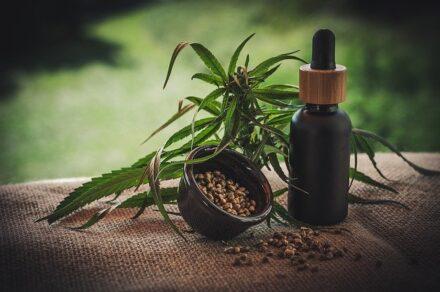 Mity dotyczące CBD i medycznej marihuany